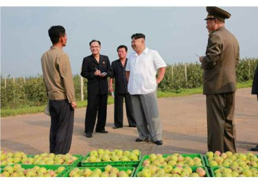 150818 - RS - KIM JONG UN - Marschall KIM JONG UN besuchte das Obstbaukombinat Taedonggang - 18 - 경애하는 김정은동지께서 대동강과수종합농장을 현지지도하시였다