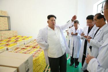 150901 - SK - KIM JONG UN - Marschall KIM JONG UN besichtigte das neugebaute Maisverarbeitungswerk Pyongyang - 04 - 경애하는 김정은동지께서 새로 건설한 평양강냉이가공공장을 현지지도하시였다