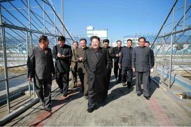 151031 - 조선의 오늘 - KIM JONG UN - Marschall KIM JONG UN besuchte den modernisierten Welszuchtbetrieb Pyongyang - 03 - 경애하는 김정은동지께서 우리 나라 양어부문의 본보기, 표준공장으로 전변된 평양메기공장을 현지지도하시였다