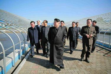 151031 - 조선의 오늘 - KIM JONG UN - Marschall KIM JONG UN besuchte den modernisierten Welszuchtbetrieb Pyongyang - 04 - 경애하는 김정은동지께서 우리 나라 양어부문의 본보기, 표준공장으로 전변된 평양메기공장을 현지지도하시였다
