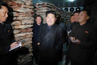 151031 - 조선의 오늘 - KIM JONG UN - Marschall KIM JONG UN besuchte den modernisierten Welszuchtbetrieb Pyongyang - 06 - 경애하는 김정은동지께서 우리 나라 양어부문의 본보기, 표준공장으로 전변된 평양메기공장을 현지지도하시였다