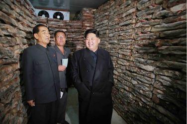151031 - 조선의 오늘 - KIM JONG UN - Marschall KIM JONG UN besuchte den modernisierten Welszuchtbetrieb Pyongyang - 07 - 경애하는 김정은동지께서 우리 나라 양어부문의 본보기, 표준공장으로 전변된 평양메기공장을 현지지도하시였다