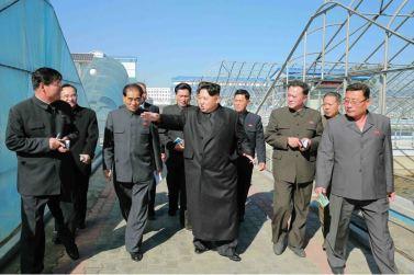 151031 - 조선의 오늘 - KIM JONG UN - Marschall KIM JONG UN besuchte den modernisierten Welszuchtbetrieb Pyongyang - 08 - 경애하는 김정은동지께서 우리 나라 양어부문의 본보기, 표준공장으로 전변된 평양메기공장을 현지지도하시였다