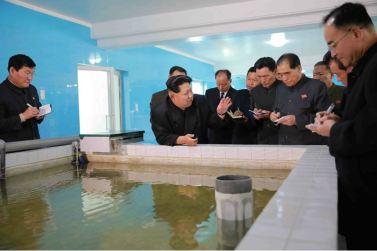 151031 - 조선의 오늘 - KIM JONG UN - Marschall KIM JONG UN besuchte den modernisierten Welszuchtbetrieb Pyongyang - 13 - 경애하는 김정은동지께서 우리 나라 양어부문의 본보기, 표준공장으로 전변된 평양메기공장을 현지지도하시였다