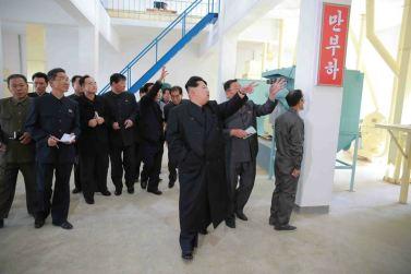 151031 - 조선의 오늘 - KIM JONG UN - Marschall KIM JONG UN besuchte den modernisierten Welszuchtbetrieb Pyongyang - 16 - 경애하는 김정은동지께서 우리 나라 양어부문의 본보기, 표준공장으로 전변된 평양메기공장을 현지지도하시였다