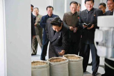 151031 - 조선의 오늘 - KIM JONG UN - Marschall KIM JONG UN besuchte den modernisierten Welszuchtbetrieb Pyongyang - 17 - 경애하는 김정은동지께서 우리 나라 양어부문의 본보기, 표준공장으로 전변된 평양메기공장을 현지지도하시였다