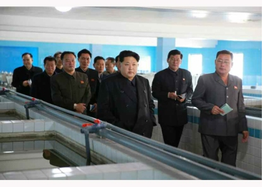 151031 - RS - KIM JONG UN - Marschall KIM JONG UN besuchte den modernisierten Welszuchtbetrieb Pyongyang - 17 - 경애하는 김정은동지께서 우리 나라 양어부문의 본보기, 표준공장으로 전변된 평양메기공장을 현지지도하시였다
