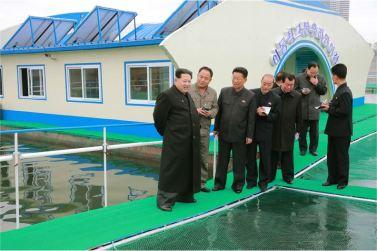 151118 - 조선의 오늘 - KIM JONG UN - Marschall KIM JONG UN besichtigte die mobilen Fischzuchtnetze im Fluss Taedong - 02 - 경애하는 김정은동지께서 대동강에 새로 설치한 이동식그물우리양어장을 현지지도하시였다