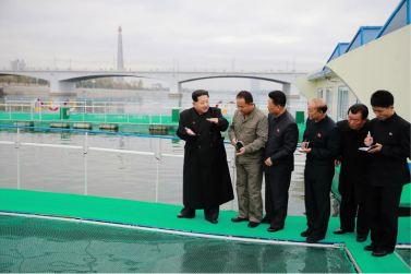 151118 - 조선의 오늘 - KIM JONG UN - Marschall KIM JONG UN besichtigte die mobilen Fischzuchtnetze im Fluss Taedong - 03 - 경애하는 김정은동지께서 대동강에 새로 설치한 이동식그물우리양어장을 현지지도하시였다