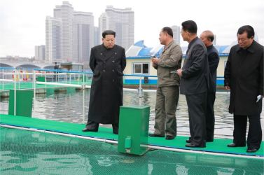 151118 - 조선의 오늘 - KIM JONG UN - Marschall KIM JONG UN besichtigte die mobilen Fischzuchtnetze im Fluss Taedong - 04 - 경애하는 김정은동지께서 대동강에 새로 설치한 이동식그물우리양어장을 현지지도하시였다