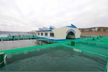 151118 - 조선의 오늘 - KIM JONG UN - Marschall KIM JONG UN besichtigte die mobilen Fischzuchtnetze im Fluss Taedong - 09 - 경애하는 김정은동지께서 대동강에 새로 설치한 이동식그물우리양어장을 현지지도하시였다