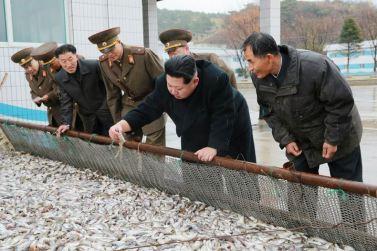 151123 - 조선의 오늘 - KIM JONG UN - Marschall KIM JONG UN besichtigte den Fischereibetrieb '25. August' der 313. Truppe der KVA - 02 - 경애하는 김정은동지께서 사회주의바다향기 차넘치는 조선인민군 제313군부대관하 8월25일수산사업소를 현지지도하시였다