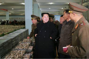 151123 - 조선의 오늘 - KIM JONG UN - Marschall KIM JONG UN besichtigte den Fischereibetrieb '25. August' der 313. Truppe der KVA - 04 - 경애하는 김정은동지께서 사회주의바다향기 차넘치는 조선인민군 제313군부대관하 8월25일수산사업소를 현지지도하시였다