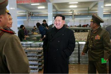 151123 - 조선의 오늘 - KIM JONG UN - Marschall KIM JONG UN besichtigte den Fischereibetrieb '25. August' der 313. Truppe der KVA - 05 - 경애하는 김정은동지께서 사회주의바다향기 차넘치는 조선인민군 제313군부대관하 8월25일수산사업소를 현지지도하시였다