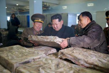 151123 - 조선의 오늘 - KIM JONG UN - Marschall KIM JONG UN besichtigte den Fischereibetrieb '25. August' der 313. Truppe der KVA - 10 - 경애하는 김정은동지께서 사회주의바다향기 차넘치는 조선인민군 제313군부대관하 8월25일수산사업소를 현지지도하시였다