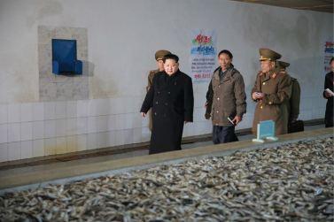 151125 - RS - KIM JONG UN - Marschall KIM JONG UN besichtigte den Fischereibetrieb Nr. 15 der 549. Truppe der KVA - 02 - 경애하는 김정은동지께서 조선인민군 제549군부대관하 15호수산사업소를 현지지도하시였다