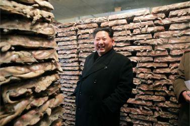 151125 - RS - KIM JONG UN - Marschall KIM JONG UN besichtigte den Fischereibetrieb Nr. 15 der 549. Truppe der KVA - 05 - 경애하는 김정은동지께서 조선인민군 제549군부대관하 15호수산사업소를 현지지도하시였다