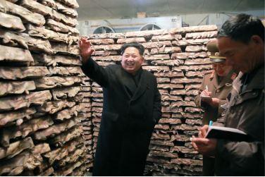 151125 - RS - KIM JONG UN - Marschall KIM JONG UN besichtigte den Fischereibetrieb Nr. 15 der 549. Truppe der KVA - 06 - 경애하는 김정은동지께서 조선인민군 제549군부대관하 15호수산사업소를 현지지도하시였다