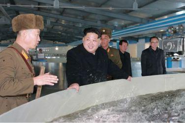 151212 - 조선의 오늘 - KIM JONG UN - Genosse KIM JONG UN besuchte den Welszuchtbetrieb '9. Mai' - 09 - 경애하는 김정은동지께서 양어의 과학화, 집약화, 공업화가 높은 수준에서 실현된 5월9일메기공장을 현지지도하시였다