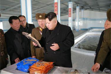 151212 - 조선의 오늘 - KIM JONG UN - Genosse KIM JONG UN besuchte den Welszuchtbetrieb '9. Mai' - 11 - 경애하는 김정은동지께서 양어의 과학화, 집약화, 공업화가 높은 수준에서 실현된 5월9일메기공장을 현지지도하시였다