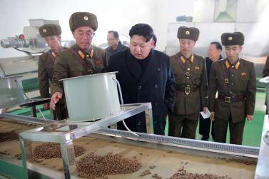 151212 - 조선의 오늘 - KIM JONG UN - Genosse KIM JONG UN besuchte den Welszuchtbetrieb '9. Mai' - 14 - 경애하는 김정은동지께서 양어의 과학화, 집약화, 공업화가 높은 수준에서 실현된 5월9일메기공장을 현지지도하시였다