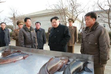 151216 - 조선의 오늘 - KIM JONG UN - Marschall KIM JONG UN besichtigte den Welszuchtbetrieb Samchon - 02 - 경애하는 김정은동지께서 삼천메기공장을 현지지도하시고 세계적수준의 메기공장으로 전변시킬데 대한 과업을 제시하시였다