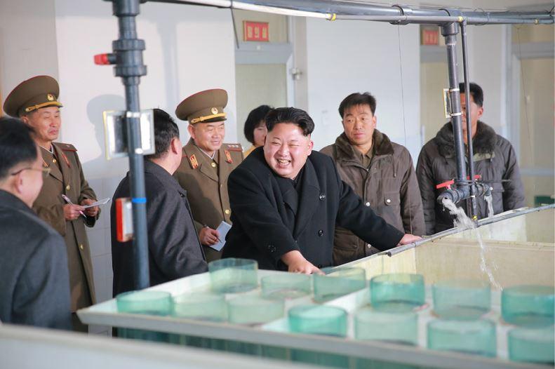 151216 - 조선의 오늘 - KIM JONG UN - Marschall KIM JONG UN besichtigte den Welszuchtbetrieb Samchon - 04 - 경애하는 김정은동지께서 삼천메기공장을 현지지도하시고 세계적수준의 메기공장으로 전변시킬데 대한 과업을 제시하시였다