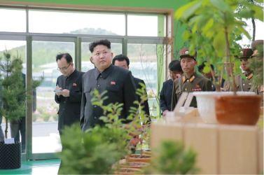 160515 - 조선의 오늘 - KIM JONG UN - Marschall KIM JONG UN besuchte die Baumschule Nr. 122 der KVA - 06 - 경애하는 김정은동지께서 지식경제시대의 요구에 맞게 과학화, 공업화, 집약화가 훌륭히 실현된 조선인민군 122호양묘장을 현지지도하시였다
