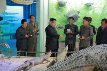 160521 - 조선의 오늘 - KIM JONG UN - Genosse KIM JONG UN besuchte das Naturmuseum und den Zentralen Zoologischen Garten vor deren Einweihungen - 07 - 경애하는 김정은동지께서 완공을 앞둔 자연박물관과 중앙동물원을 현지지도하시였다