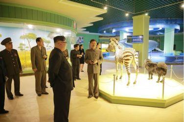 160521 - 조선의 오늘 - KIM JONG UN - Genosse KIM JONG UN besuchte das Naturmuseum und den Zentralen Zoologischen Garten vor deren Einweihungen - 09 - 경애하는 김정은동지께서 완공을 앞둔 자연박물관과 중앙동물원을 현지지도하시였다