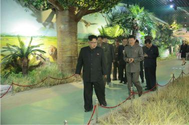 160521 - 조선의 오늘 - KIM JONG UN - Genosse KIM JONG UN besuchte das Naturmuseum und den Zentralen Zoologischen Garten vor deren Einweihungen - 11 - 경애하는 김정은동지께서 완공을 앞둔 자연박물관과 중앙동물원을 현지지도하시였다