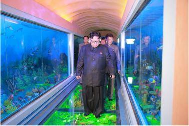 160521 - 조선의 오늘 - KIM JONG UN - Genosse KIM JONG UN besuchte das Naturmuseum und den Zentralen Zoologischen Garten vor deren Einweihungen - 12 - 경애하는 김정은동지께서 완공을 앞둔 자연박물관과 중앙동물원을 현지지도하시였다