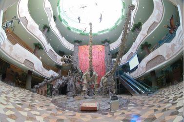 160521 - 조선의 오늘 - KIM JONG UN - Genosse KIM JONG UN besuchte das Naturmuseum und den Zentralen Zoologischen Garten vor deren Einweihungen - 15 - 경애하는 김정은동지께서 완공을 앞둔 자연박물관과 중앙동물원을 현지지도하시였다