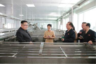 160610 - 조선의 오늘 - KIM JONG UN - Genosse KIM JONG UN besuchte die neu gebaute Kimchi-Fabrik Ryugyong - 07 - 경애하는 김정은동지께서 새로 건설된 류경김치공장을 현지지도하시였다