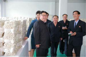 160621 - 조선의 오늘 - Genosse KIM JONG UN besuchte die Pyongyanger Seidenspinnerei 'Kim Jong Suk' - 10 - 경애하는 김정은동지께서 김정숙평양제사공장을 현지지도하시였다