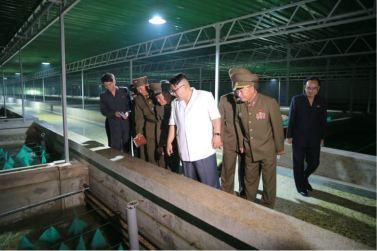 160706 - 조선의 오늘 - KIM JONG UN - Genosse KIM JONG UN besichtigte den rekonstruierten Betrieb für Sumpfschildkrötenzucht Pyongyang - 02 - 경애하는 김정은동지께서 우리 나라 양식공장의 본보기, 표준으로 전변된 평양자라공장을 현지지도하시였다