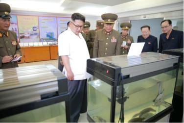 160706 - 조선의 오늘 - KIM JONG UN - Genosse KIM JONG UN besichtigte den rekonstruierten Betrieb für Sumpfschildkrötenzucht Pyongyang - 06 - 경애하는 김정은동지께서 우리 나라 양식공장의 본보기, 표준으로 전변된 평양자라공장을 현지지도하시였다