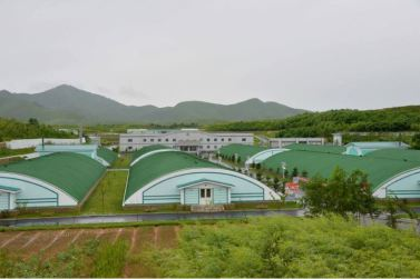 160706 - 조선의 오늘 - KIM JONG UN - Genosse KIM JONG UN besichtigte den rekonstruierten Betrieb für Sumpfschildkrötenzucht Pyongyang - 09 - 경애하는 김정은동지께서 우리 나라 양식공장의 본보기, 표준으로 전변된 평양자라공장을 현지지도하시였다