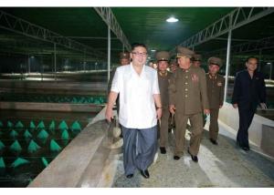 160706 - RS - KIM JONG UN - Genosse KIM JONG UN besichtigte den rekonstruierten Betrieb für Sumpfschildkrötenzucht Pyongyang - 03 - 경애하는 김정은동지께서 우리 나라 양식공장의 본보기, 표준으로 전변된 평양자라공장을 현지지도하시였다