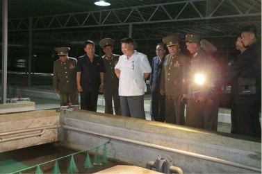 160706 - SK - KIM JONG UN - Genosse KIM JONG UN besichtigte den rekonstruierten Betrieb für Sumpfschildkrötenzucht Pyongyang - 01 - 경애하는 김정은동지께서 우리 나라 양식공장의 본보기, 표준으로 전변된 평양자라공장을 현지지도하시였다