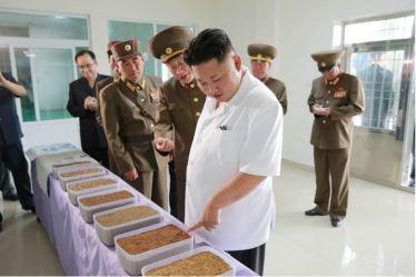 160724 - 조선의 오늘 - KIM JONG UN - Marschall KIM JONG UN besuchte die Fischmehlfabrik der 810. Truppe der KVA - 06 - 경애하는 김정은동지께서 조선인민군 제810군부대산하 어분사료공장을 현지지도하시였다