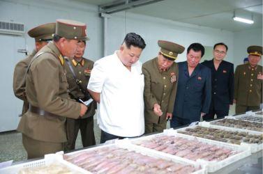 160724 - 조선의 오늘 - KIM JONG UN - Marschall KIM JONG UN besuchte die Fischmehlfabrik der 810. Truppe der KVA - 07 - 경애하는 김정은동지께서 조선인민군 제810군부대산하 어분사료공장을 현지지도하시였다