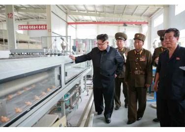 160727 - RS - Genosse KIM JONG UN besuchte das Baumaterialienkombinat Chollima - 12 - 경애하는 김정은동지께서 천리마건재종합공장을 현지지도하시였다