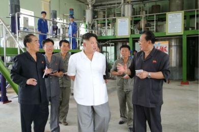 160813 - 조선의 오늘 - KIM JONG UN - Genosse KIM JONG UN besichtigte die neuen Produktionsprozesse im Vereinigten Chemiewerk Sunchon - 03 - 경애하는 김정은동지께서 순천화학련합기업소에 새로 꾸린 아크릴계칠감생산공정을 돌아보시였다