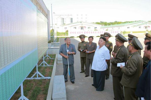 160818 - 조선의 오늘 - KIM JONG UN - Marschall KIM JONG UN besichtigte den Schweinezuchtbetrieb Taedonggang - 02 - 경애하는 김정은동지께서 대동강돼지공장을 현지지도하시였다