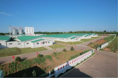 160818 - 조선의 오늘 - KIM JONG UN - Marschall KIM JONG UN besichtigte den Schweinezuchtbetrieb Taedonggang - 07 - 경애하는 김정은동지께서 대동강돼지공장을 현지지도하시였다