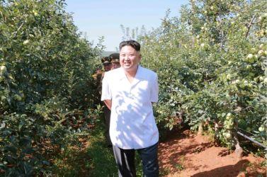 160818 - 조선의 오늘 - KIM JONG UN - Marschall KIM JONG UN besuchte das Obstbaukombinat Taedonggang - 01 - 경애하는 김정은동지께서 대동강과수종합농장을 현지지도하시였다