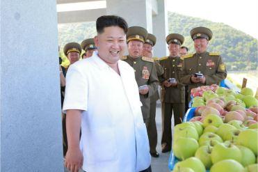 160818 - 조선의 오늘 - KIM JONG UN - Marschall KIM JONG UN besuchte das Obstbaukombinat Taedonggang - 02 - 경애하는 김정은동지께서 대동강과수종합농장을 현지지도하시였다