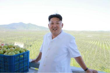 160818 - 조선의 오늘 - KIM JONG UN - Marschall KIM JONG UN besuchte das Obstbaukombinat Taedonggang - 03 - 경애하는 김정은동지께서 대동강과수종합농장을 현지지도하시였다