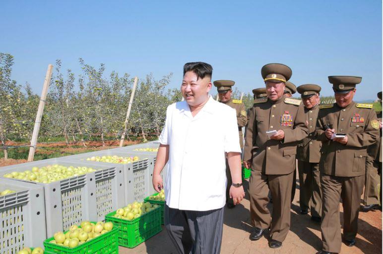 160818 - 조선의 오늘 - KIM JONG UN - Marschall KIM JONG UN besuchte das Obstbaukombinat Taedonggang - 04 - 경애하는 김정은동지께서 대동강과수종합농장을 현지지도하시였다